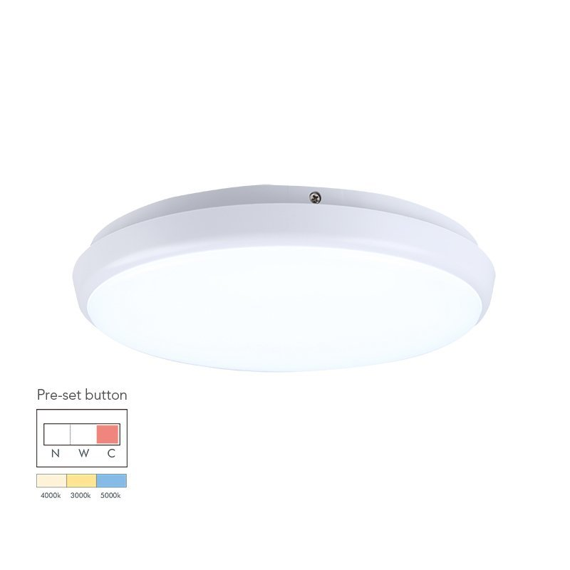 12W Round Dimmable LED Ceiling Lamp